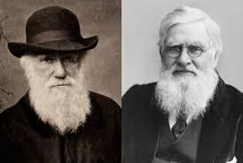 Un ejemplo es la teoría de la evolución por selección natural de Darwin y Wallace, que explica el origen y evolución de las especies en el planeta Tierra