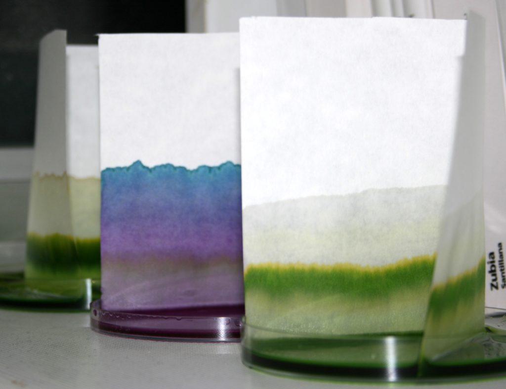 Cromatografía de papel: los colorantes de la tinta se separan a medida que la fase móvil (solución de metanol y agua) se desplaza sobre la fase estacionaria.